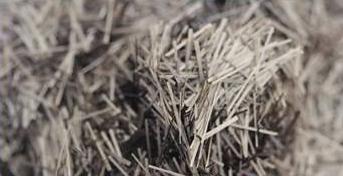 水泥混凝土/砂浆用短切玄武岩纤维,玄武岩短切纱图片