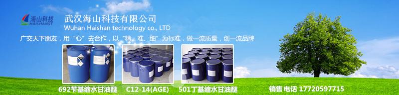 武汉海山科技有限公司