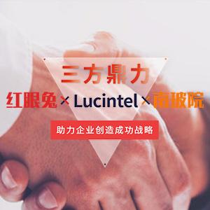 Lucintel关于复合材料行业全球市场研究报告